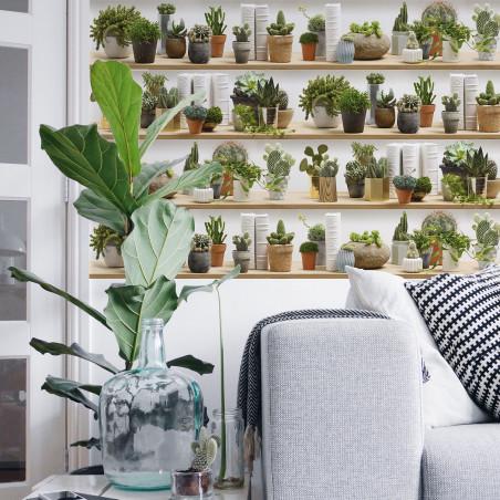Stylized cactus on shelves wallpaper