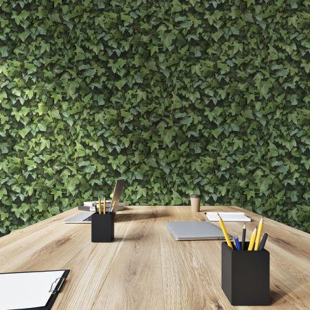 Papier peint mur de lierre