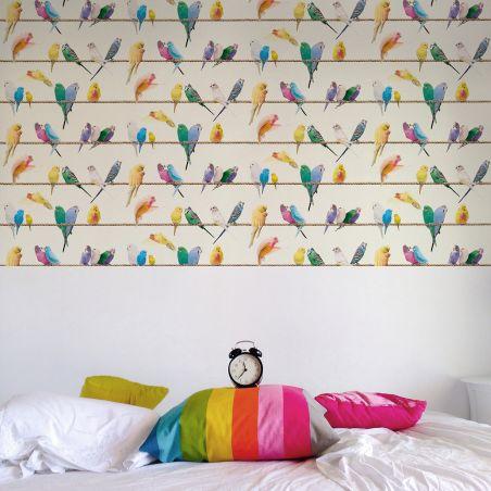 Lovebirds wallpaper - exotic