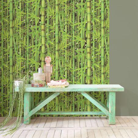 Forest bamboo wallpaper