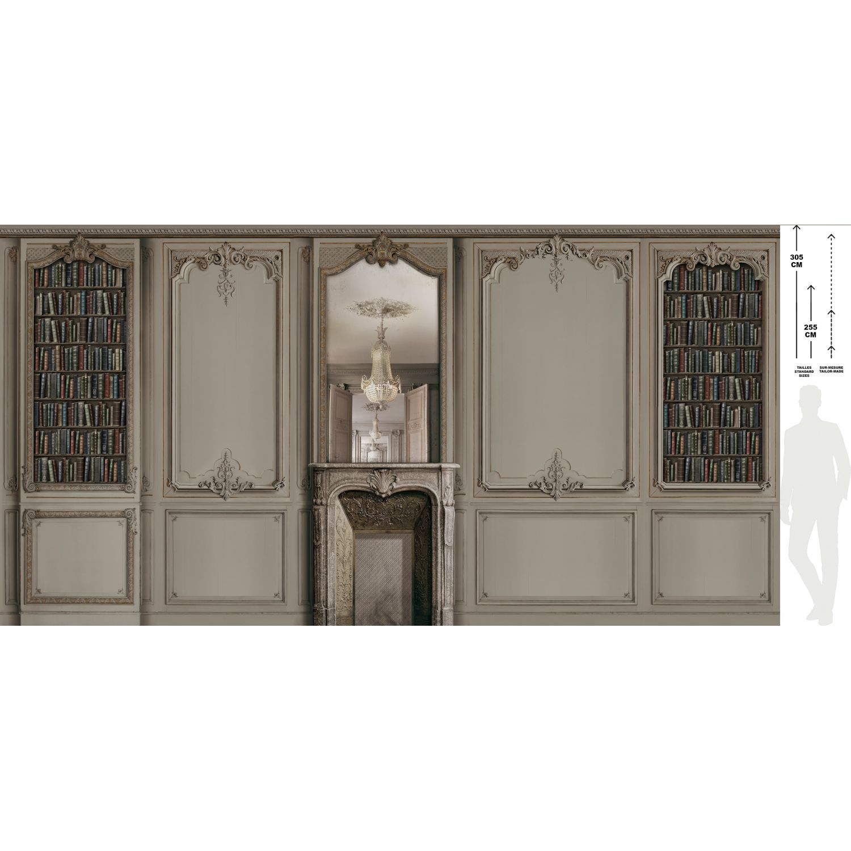 Decor Boiserie Haussmannienne Grise Cheminee Avec Bibliotheque 138cm
