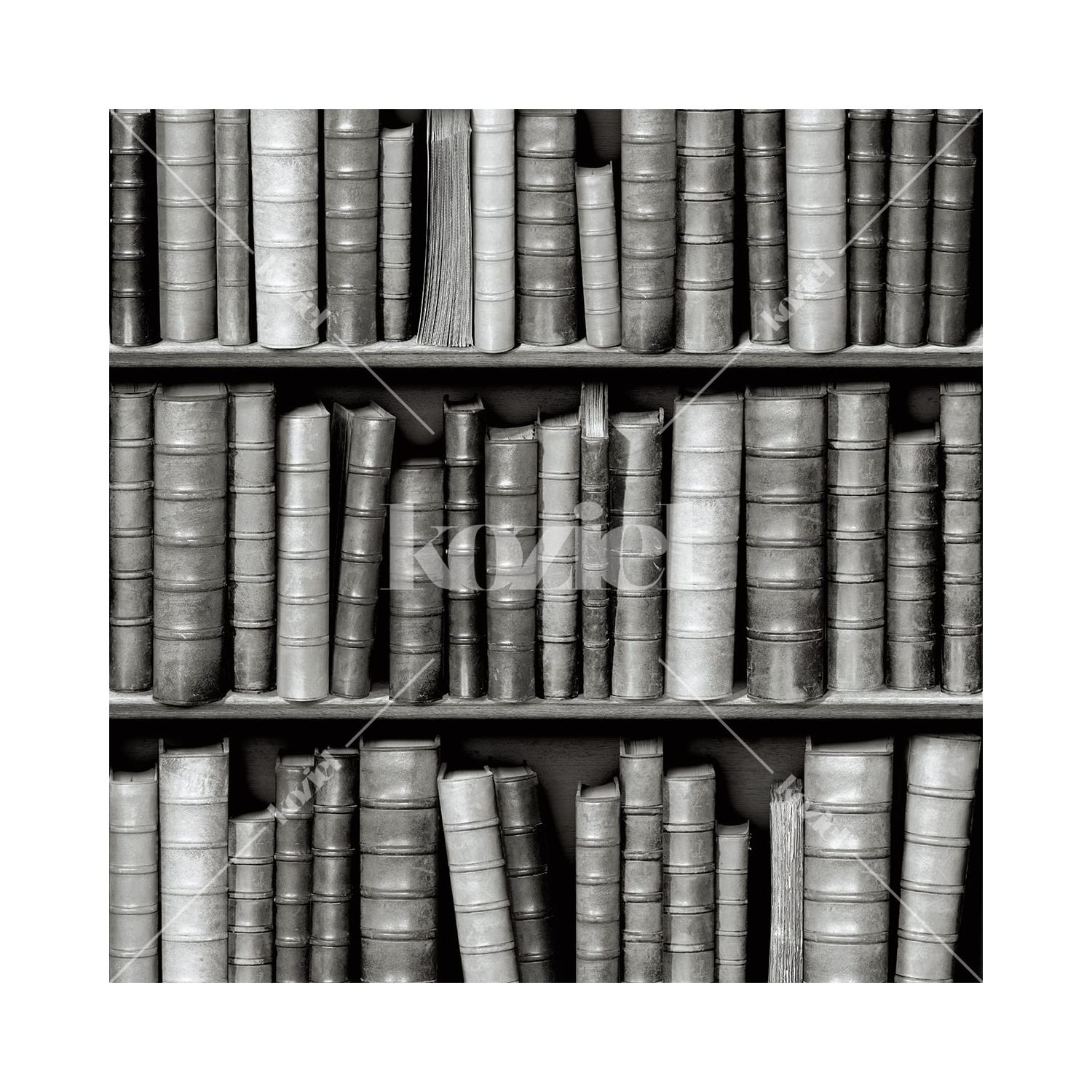 Black And White Bookshelves Wallpaper