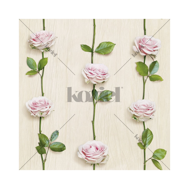 Papier Peint Rideau De Roses Bois Clair