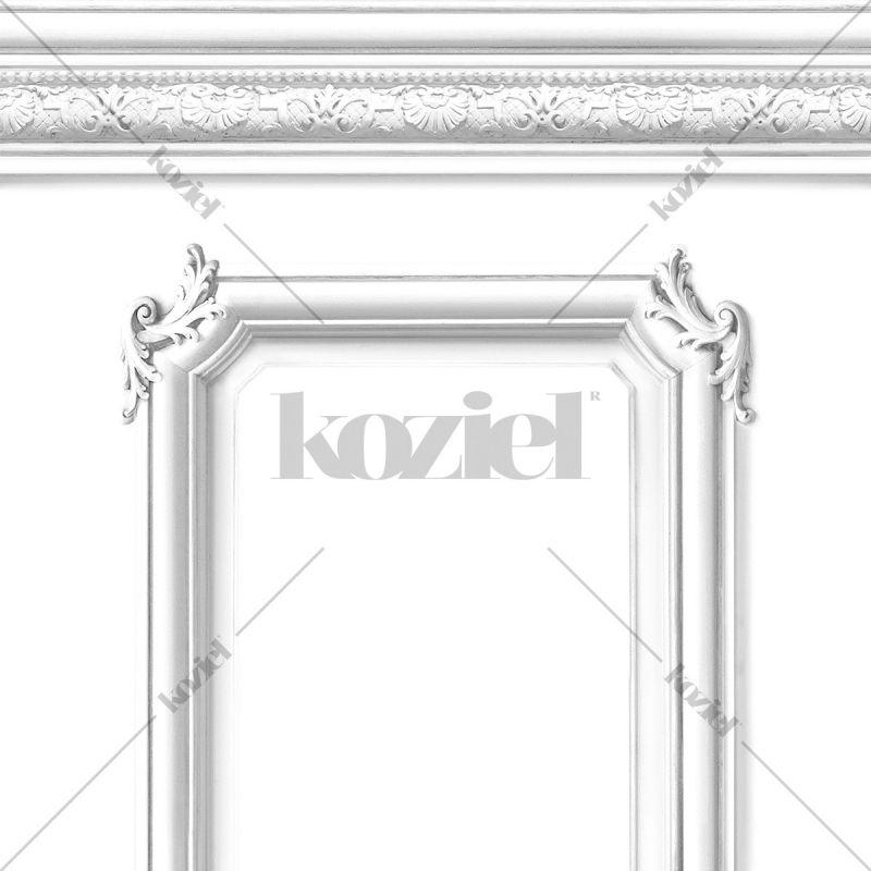 White Haussmann wainscot wallpaper- Sample
