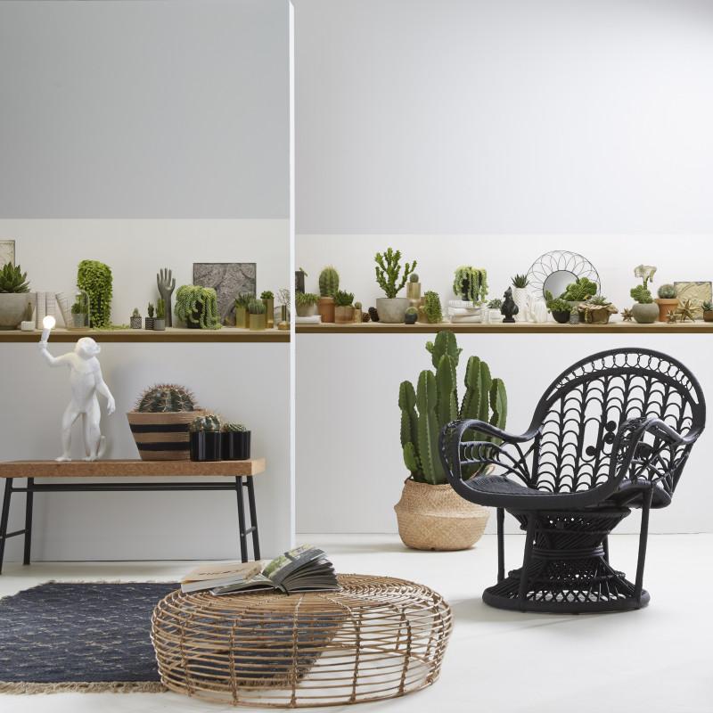 Lé Unique De Papier Peint Panoramique Détagère De Cactus