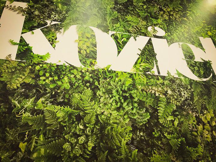Mettez Vos Murs Au Vert Koziel Le Blog