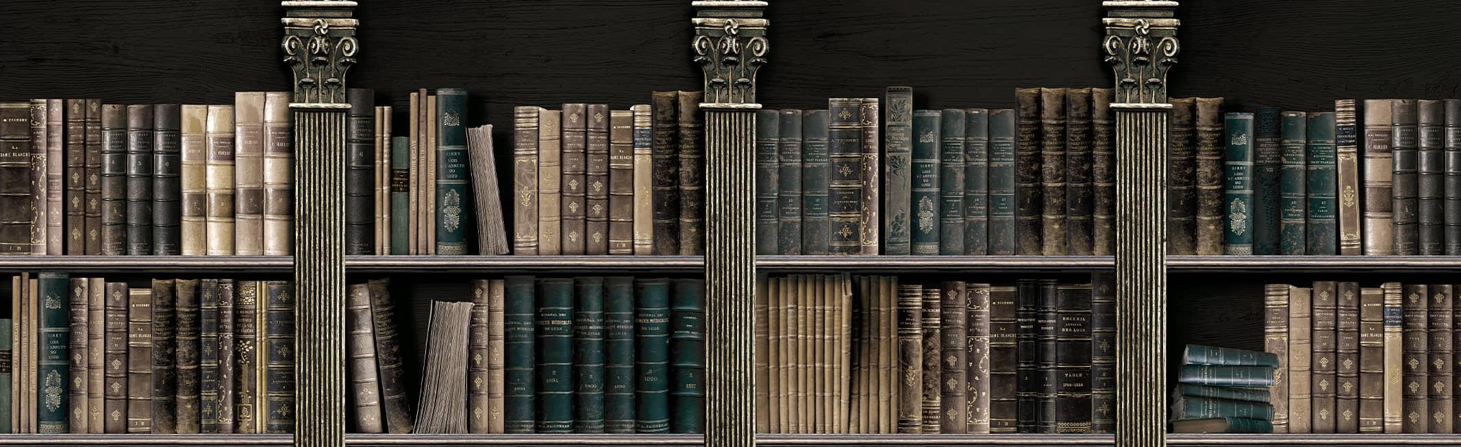 bookshelves murals